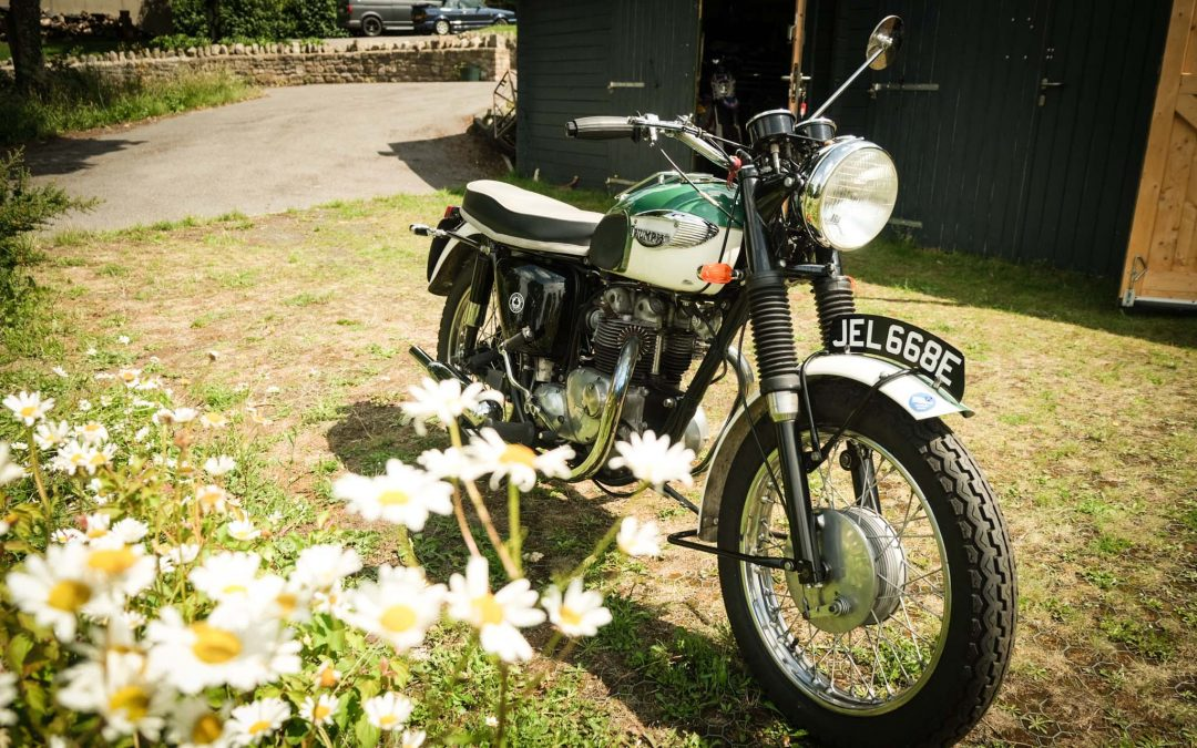 1967 Triumph T100 SS for Sale