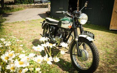 1967 Triumph T100 SS for Sale